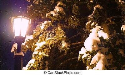 park, sneeuw, verlicht, nacht, enkel, lantaarntje