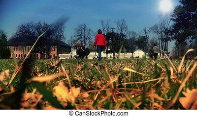 park, spelend, gezin, vrolijke