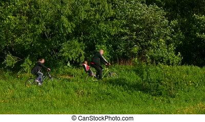 park, vader, zoon, bicycles, moeder, paardrijden