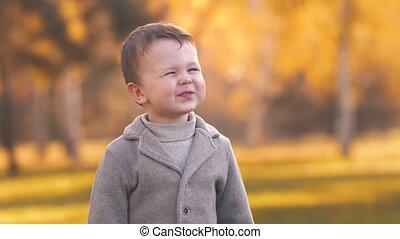 park, vrolijk, jongen, herfst