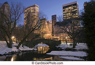 park, winter, centraal