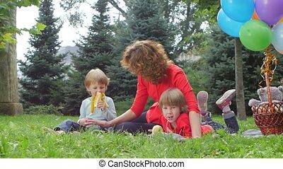park, zomer, picknick, hebben, gezin