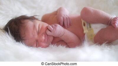 pasgeboren baby, girl.