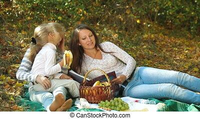 picknick, gezin, vrolijke