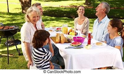 picknick, hebben, gezin, vrolijke