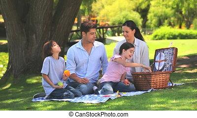 picknick, hun, pakking, gezin, weg