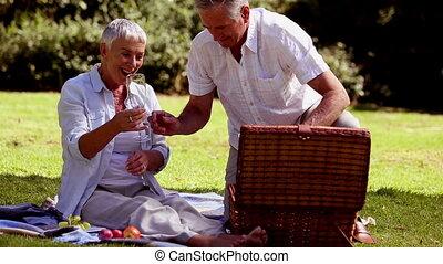picknick, paar, middelbare leeftijd , hebben
