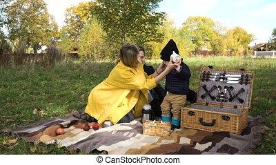 picnicking, gezin, park.
