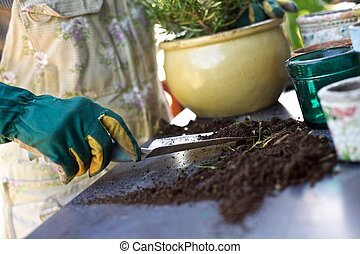 planten, nieuw, vrouwlijk, tuinman, potting