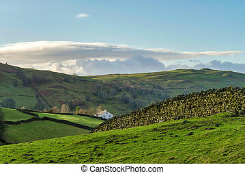 platteland, boerderij, cumbrian, ver