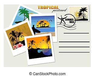 postkaart, tropische