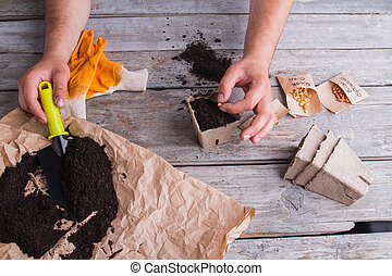 pot., bezaaiend, plant, sowing, boon