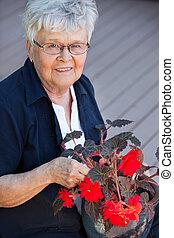 pot, vrouw, bloem, bejaarden