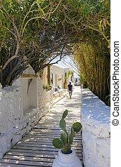 psarou, strand, mykonos, griekenland