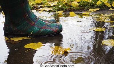 rainboots, plas