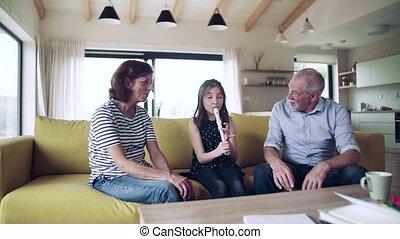 recorder., binnen, spelend, meisje, kleine, senior, grootouders