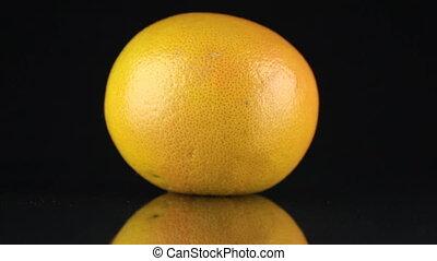 reflectie, ronddraaien, achtergrond., grapefruit, black , zijn