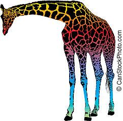regenboog, abstract, vector, -, giraffe