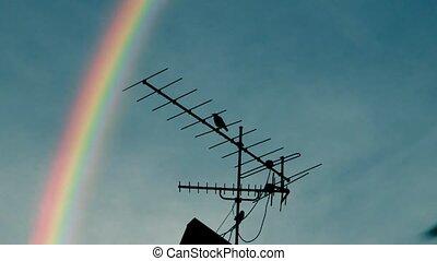 regenboog, antenne