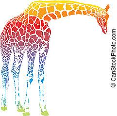 regenboog, giraffe, vector