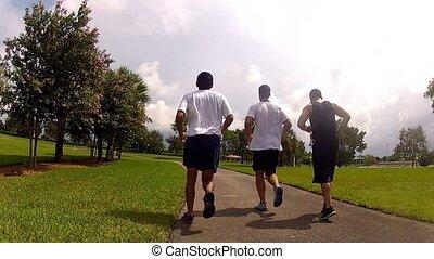 rennende , mannen, jonge, park.