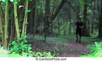 rennende , park, tiener