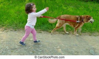 rennende , weinig; niet zo(veel), dog, meisje, kind