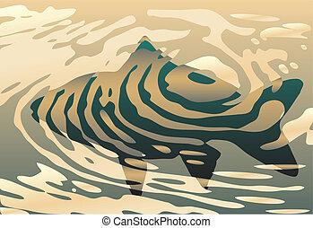 rippled, visje
