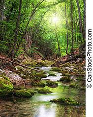rivier, diep, bos, berg