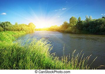 rivier, lente, bos