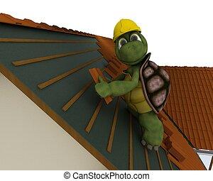 roofing, schildpad, aannemer