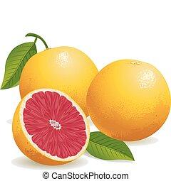 rooskleurige grapefruit