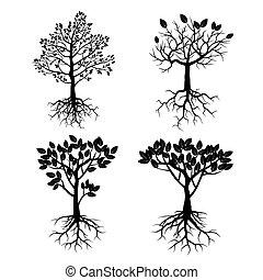 roots., set, black , bomen