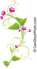 rose bloemen, sprig