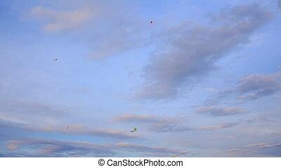roze, blauwe , wolken, vliegen, hemel, tegen, kiekendiefen, witte , aanzicht