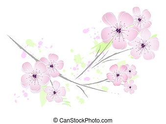 roze, floral, bloem, ontwerp, -