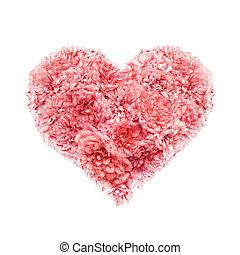 roze, hart, valentines, rozen, witte , dag