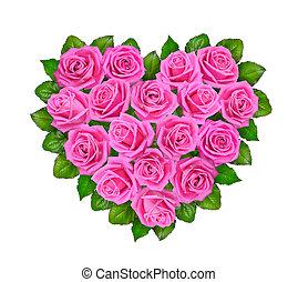 roze, hart, vrijstaand, roses., achtergrond, witte