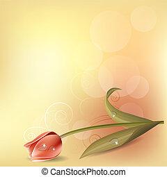 roze, pastel, tulp, achtergrond, licht