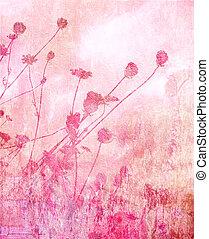 roze, zomer, zacht, weide, achtergrond