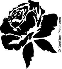 rozen, black