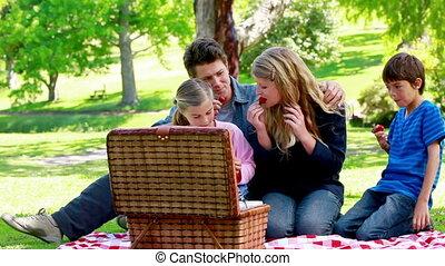 samen, gezin, picnicking