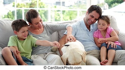 samen, relaxen, schattig, gezin