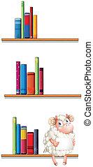schaap, bibliotheek