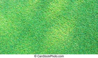 schaduw, gras, achtergrond