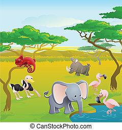 schattig, afrikaan, spotprent, dier, safari