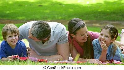 schattig, park, gezin, het liggen, deken