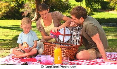 schattig, picknick, gezin, mand