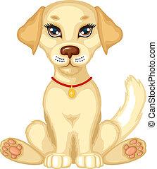 schattig, puppy, bleek