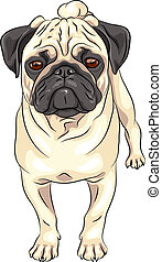 schattig, ras, vector, schets, dog, pug